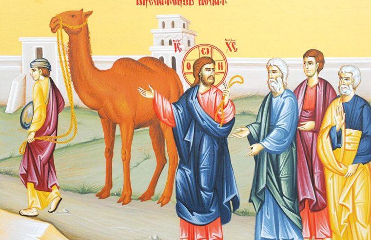 Monte Compatri – Duminica a 30-a după Rusalii (Dregătorul bogat) | Dumnezeiasca Liturghie – 24 noiembrie 2019 (orele 9.30)
