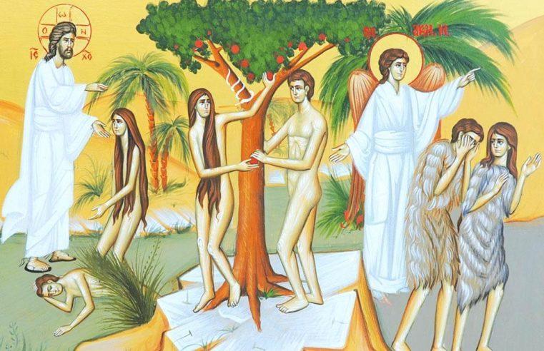 Duminica iertării (a izgonirii lui Adam din Rai) – 1 martie 2020 | Dumnezeiasca Liturghie – orele 9.30